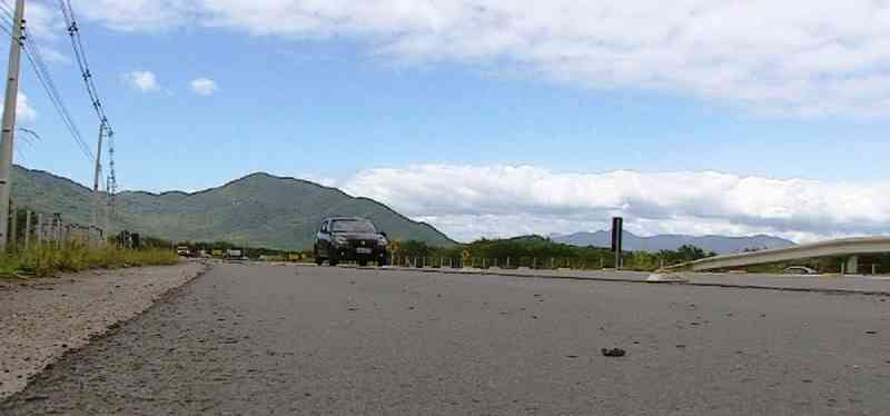 Após mortes de capivaras, vistoria deve ser feita no novo acesso ao aeroporto de Florianópolis