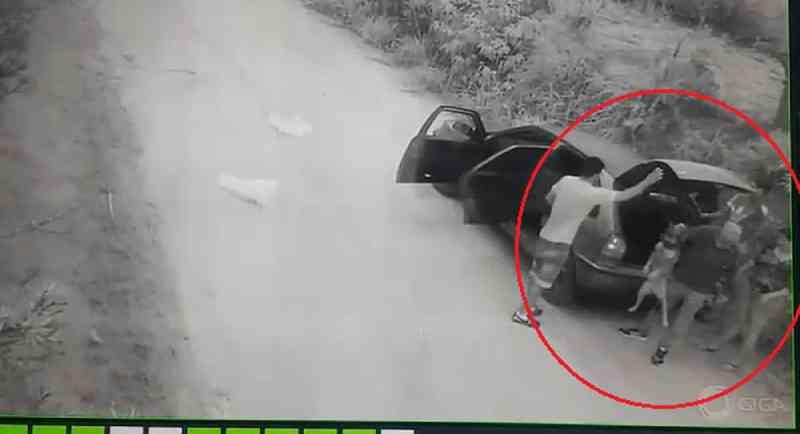 Câmera registra abandono de cachorro em estrada na zona rural de Jarinu, SP; vídeo