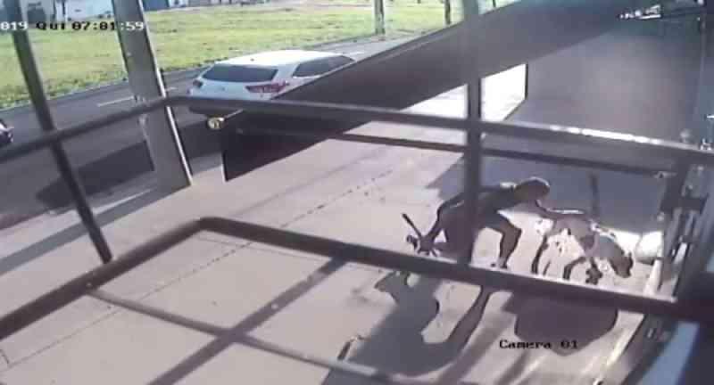 Tutora de pit bull morto após ser esfaqueado e espancado por policial aposentado fala sobre crime: 'Situação tenebrosa'