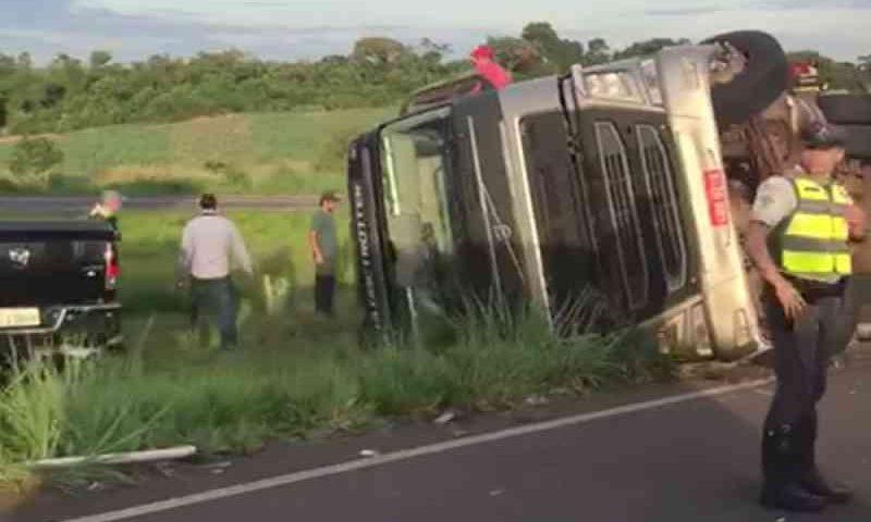 Caminhão carregado com bois tomba e animais morrem em rodovia de Sales, SP