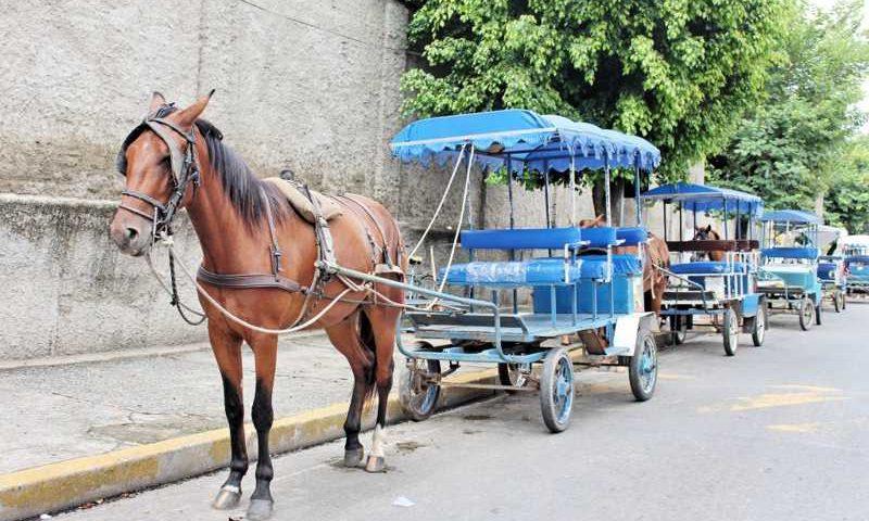 Charretes aguardam por movimento na área central de aparecida; lei aprovada proíbe atuação e incentiva tuk-tuk (Foto: Arquivo Atos)