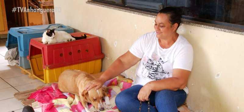 Voluntária abriga dezenas de animais na própria casa — Foto: Reprodução/TV Anhanguera