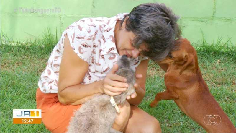 Lilian se dedica a cuidar dos animais há quatro anos — Foto: Reprodução/TV Anhanguera