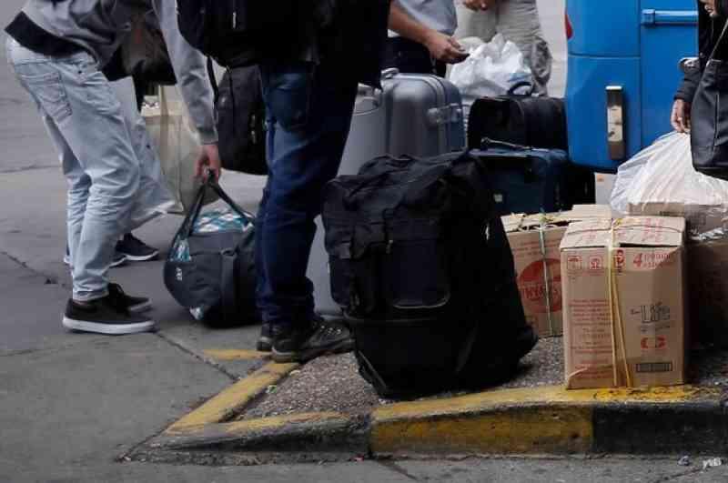 Indignante: um homem transportava dois avestruzes como encomenda em uma rodoviária na Colômbia