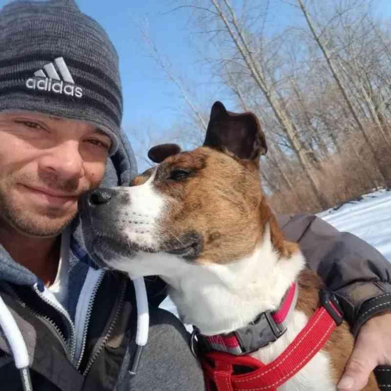 Cadela é adotada após dois anos de espera e recebe homenagem em abrigo