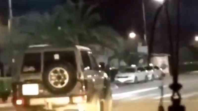 Motorista avança contra uma família de javalis em cidade espanhola