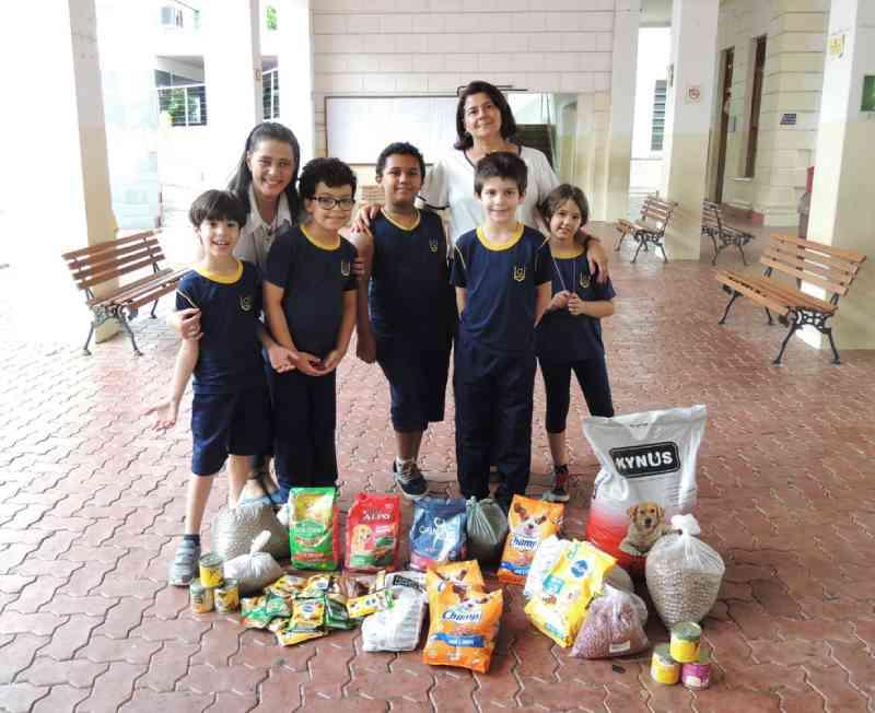 Crianças se mobilizam para ajudar cães abandonados em Juiz de Fora, MG