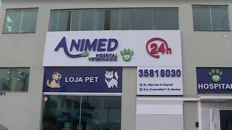 Veterinários donos de clínica são suspeitos de congelar animais mortos para cobrar mais diárias de donos — Foto: Reprodução/TV Globo