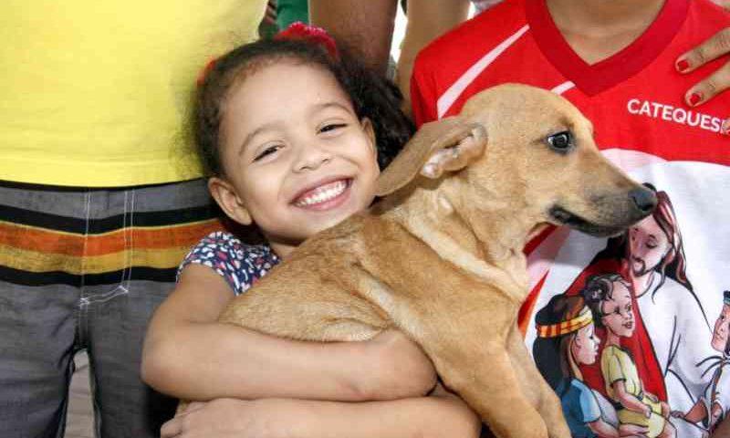 Cuiabá: adoções triplicam e resgates de gatos e cachorros dobram em 2019