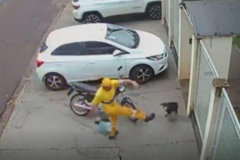 É demitido gari acusado de chutar cão que morreu após a agressão em Cianorte, PR