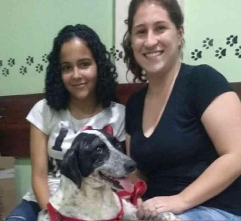Cão espancado em Valença (RJ) é adotado e ganha novo lar
