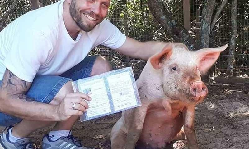 Pingo com o advogado Rogério Rammê e sua identipet: direitos garantidos como qualquer animal doméstico — Foto: Arquivo pessoal