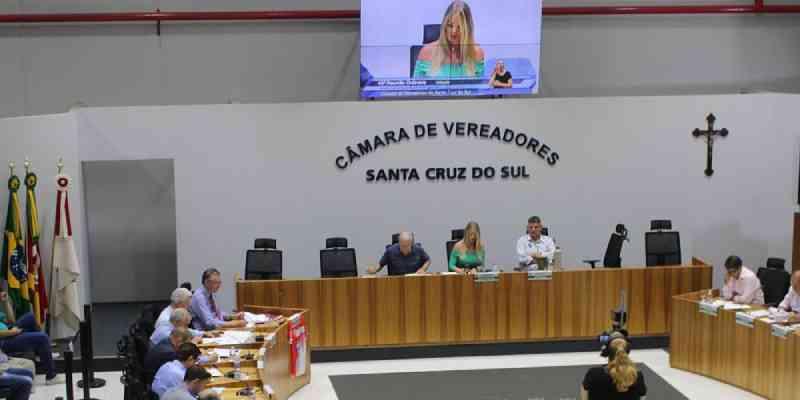 Santa Cruz do Sul (RS) aprova projeto que veda cargos comissionados a agressores de mulheres e animais