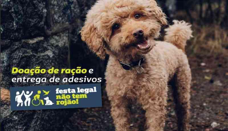 Campanha 'Festa Legal Não Tem Rojão' terá distribuição de adesivos neste sábado (21)