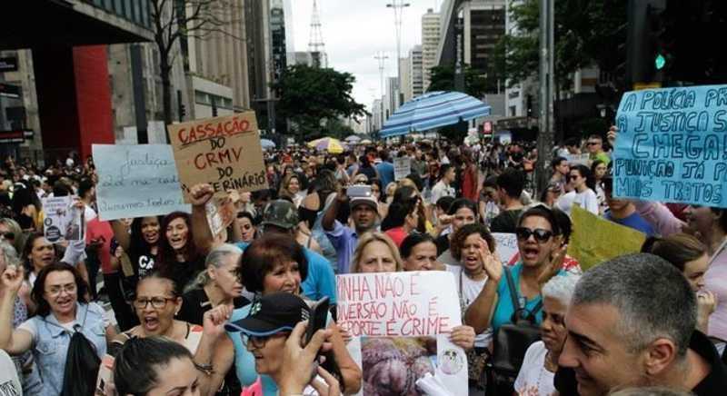 Manifestantes protestam na avenida Paulista contra rinha de cães
