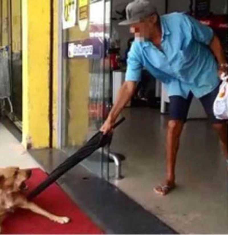 Idoso foi flagrado agredindo uma cachorro no interior de AL. FOTO: REPRODUÇÃO