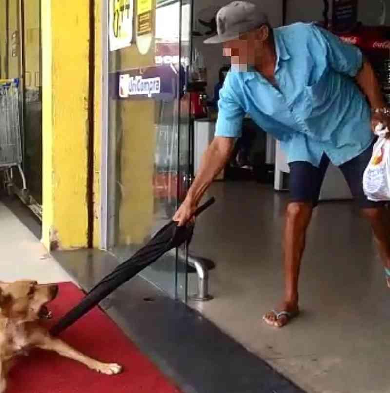 Vídeo: em mais um caso de agressão a animais, idoso fere cão com guarda-chuva