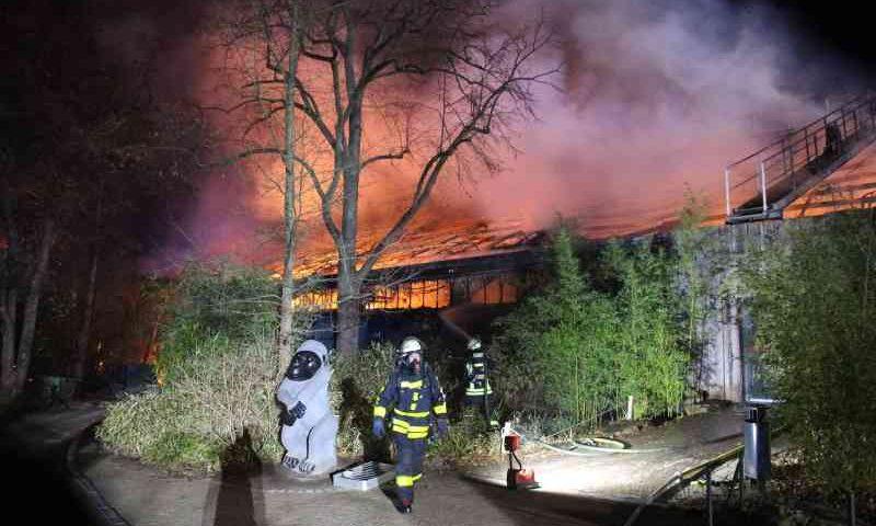 Incêndio em zoológico na Alemanha mata animais