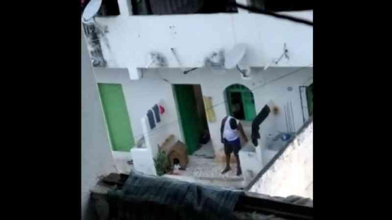 Cachorro que sofria com maus-tratos e choque elétrico é resgatado por ONG; assista