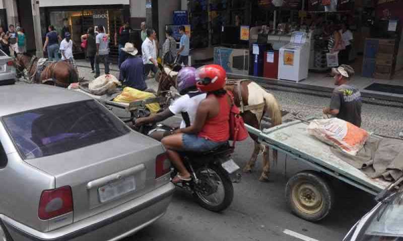 Fiscalização de lei que proíbe a circulação de carroças começa na próxima semana em Juiz de Fora, MG