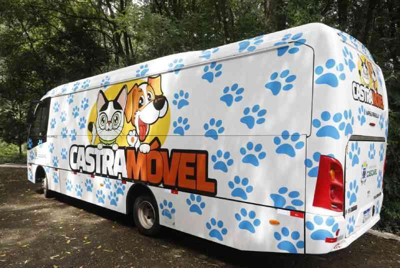 Castramóvel começa atendimentos em Cascavel (PR) na próxima segunda-feira