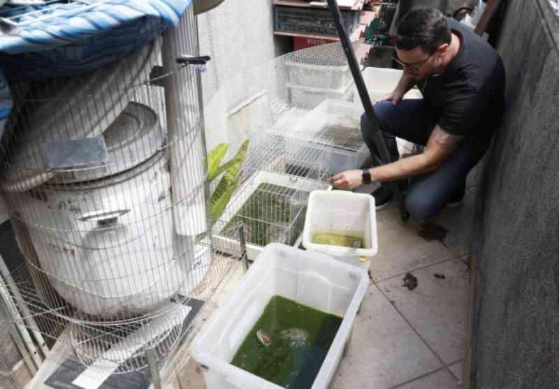 Polícia Civil resgata cerca de 70 animais silvestres em clínica no Batel, em Curitiba, PR