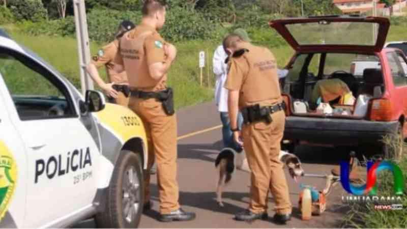 Vídeo: Homem é flagrado ao abandonar cachorro em Umuarama, PR