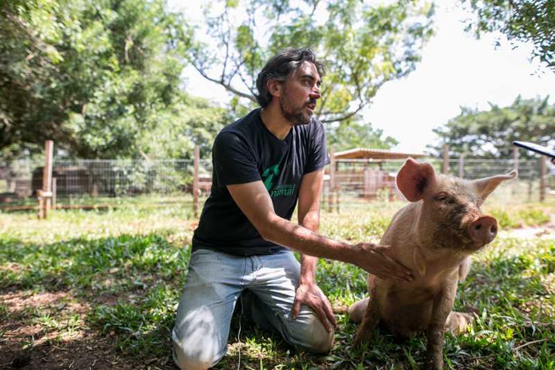 """Fernando Antunes Jr.: """"a defesa da libertação animal é indissociável da ideia de território"""". Foto: Luiza Castro/Sul21"""