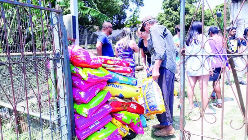 Mais de 300kg de alimentos foram arrecadados. (Foto: João Montoli/AP)