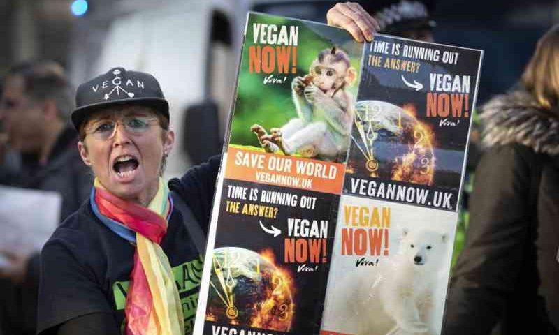Justiça britânica discute se veganismo é uma crença filosófica