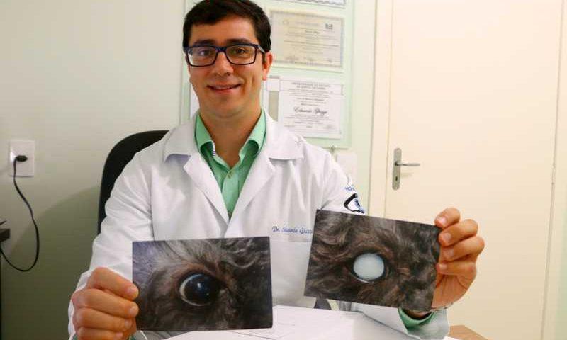 O médico veterinário Eduardo mostra o antes e o depois do olho do cachorro Kauê - Foto: Camila Paes