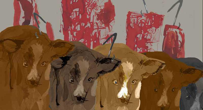 Depois, olhando para os animais mortos no chão, os matadores estavam visivelmente incomodados. BBC NEWS BRASIL