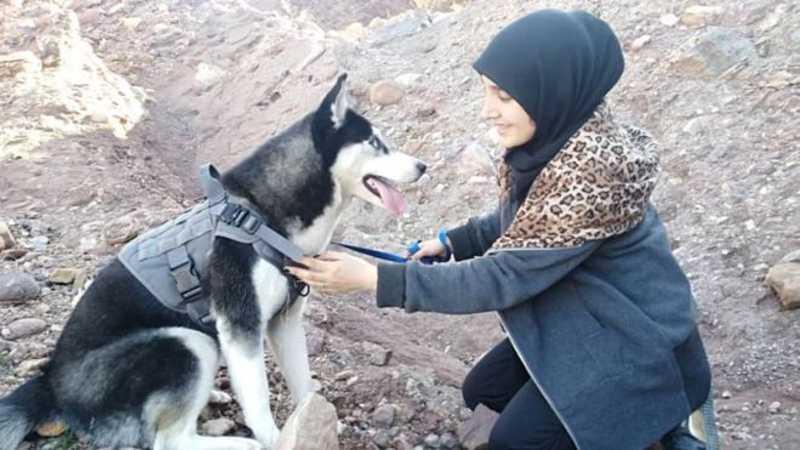 Sahba Barakzai amava sua cachorra, um husky siberiano de sete meses chamado Aseman. SAHBA BARAKZAI