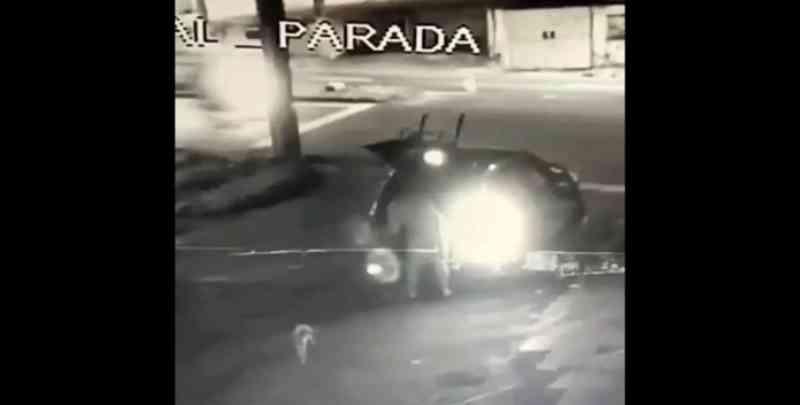 Vídeo: cães são abandonados por homem em rua escura e deserta, em Manaus, AM