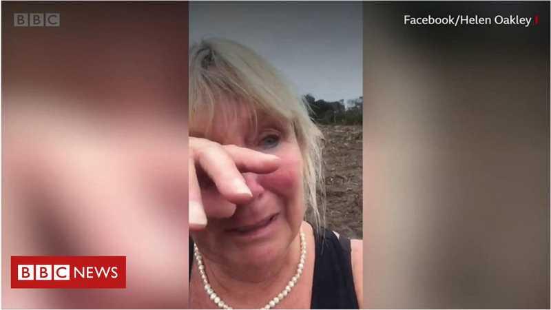 'A Austrália deveria se envergonhar': mulher viraliza com imagem de coalas mortos em área desmatada