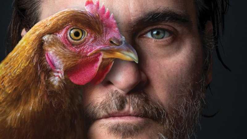 Joaquin Phoenix além do discurso no Oscar: conheça o ativismo do ator pelos animais e o meio ambiente
