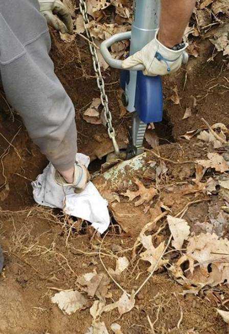 Resgate de Henry Foto: Reprodução/Facebook(Franklin County VA Animal Control and Shelter)