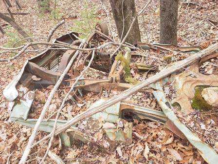 Tutores não tinham conhecimento do carro enterrado Foto: Reprodução/Facebook(Franklin County VA Animal Control and Shelter)