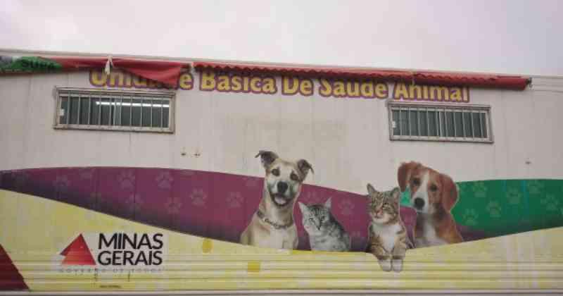 Protetores dos animais se mobilizam para viabilizar o Castramóvel em Barbacena, MG