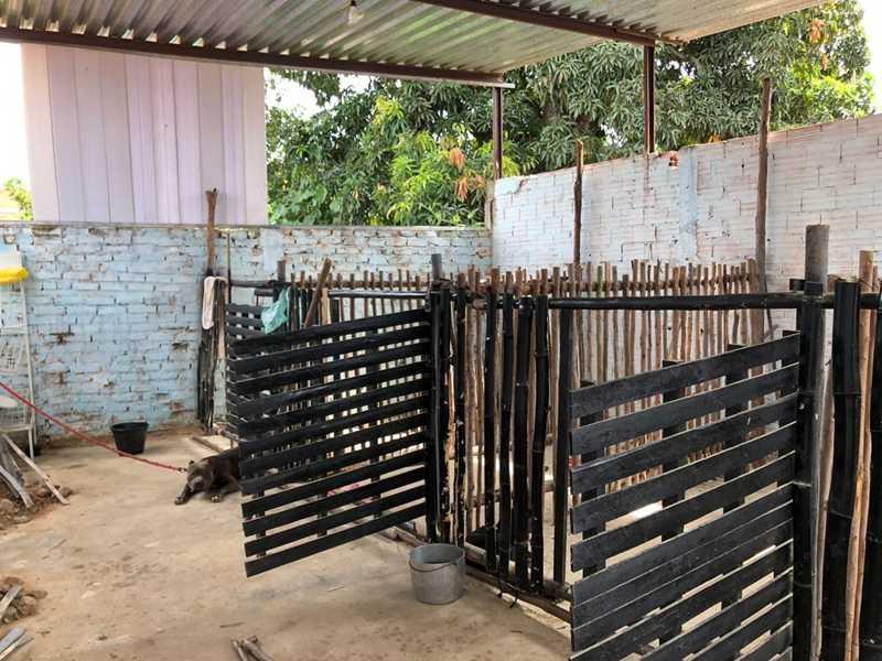Segundo a polícia, esse é o lugar onde os cães ficam na parte de trás do pet shop — Foto: Polícia Civil / Divulgação