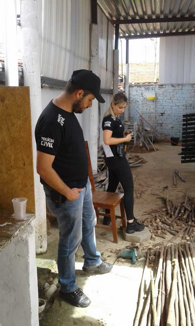 Equipe da Polícia Civil esteve no local para averiguar denúncia — Foto: Polícia Civil / Divulgação