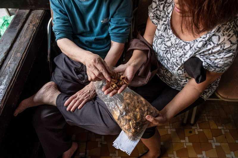 Mulher vietnamita consulta um praticante da medicina tradicional chinesa sobre o uso de escamas de pangolim. FOTO DE BRENT STIRTON, NAT GEO IMAGE COLLECTION