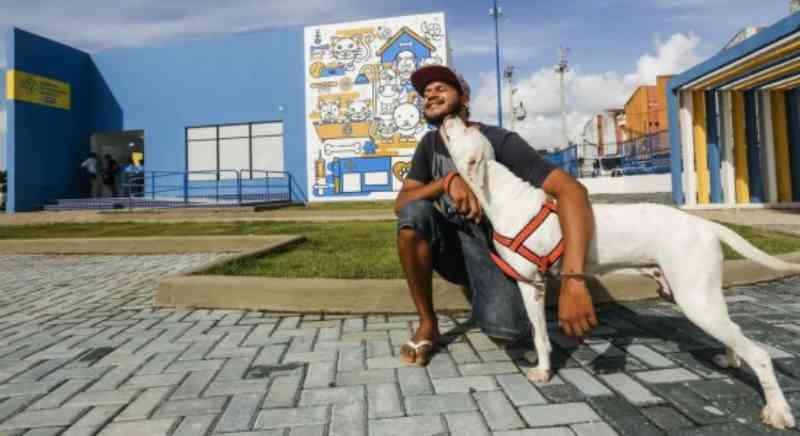 Confira como marcar castração por telefone e pela internet em Recife