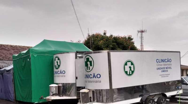 Agendamento para castração de animais é aberto pela prefeitura de Curitiba