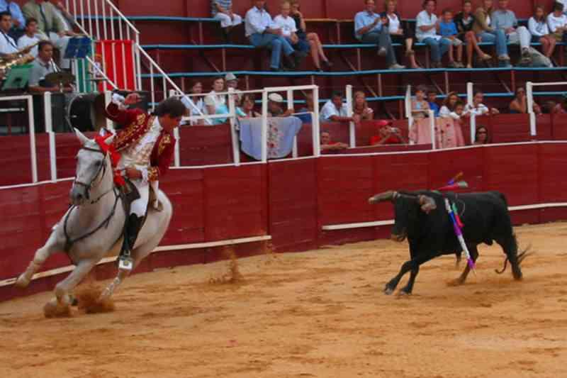 Ativistas vencem batalha enquanto o governo português aumenta imposto sobre ingressos de touradas