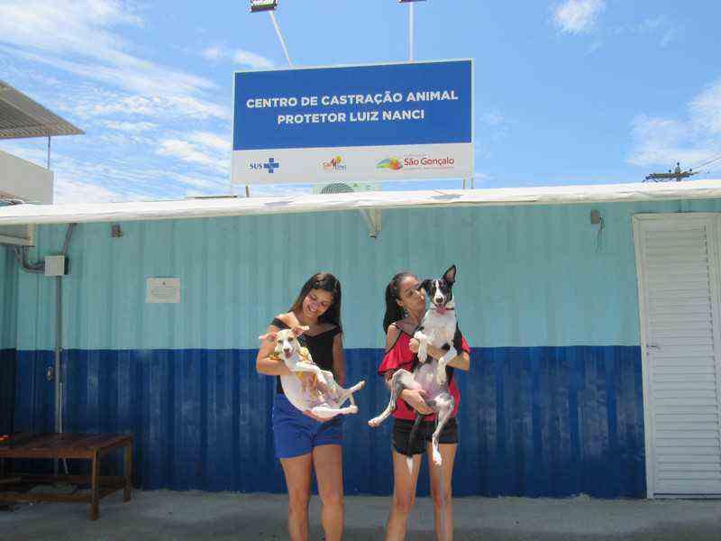 Centro de Castração de São Gonçalo (RJ) possui mais de 900 animais cadastrados