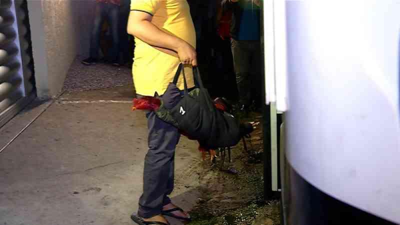 Polícia flagra rinha de galo na Grande Natal; pelo menos 50 pessoas são levadas para delegacia