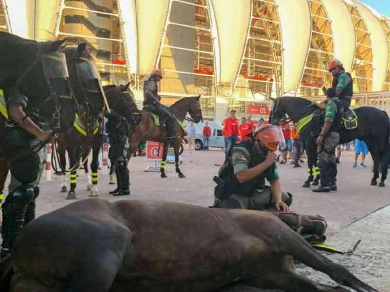 PM chora após égua da Brigada Militar morrer no entorno do Estádio Beira-Rio