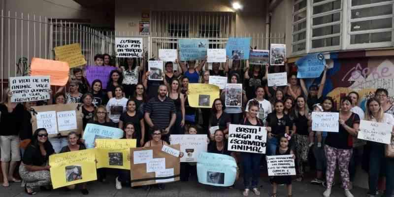 Passeata pelo fim dos maus-tratos leva dezenas de manifestantes às ruas de São Leopoldo, RS
