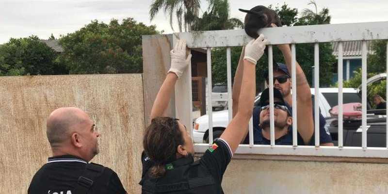 Policiais encontraram a residência muito suja e os animais sem água e comida | Foto: Polícia Civil / Divulgação / CP